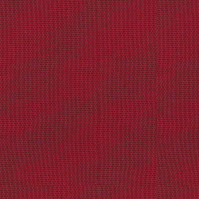 Fabric Swatch:  VESPER RUBY