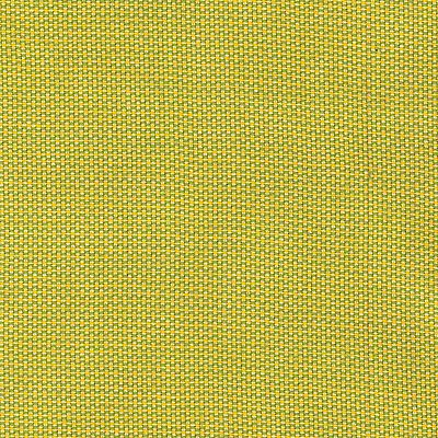 Fabric Swatch:  VESPER CITRUS