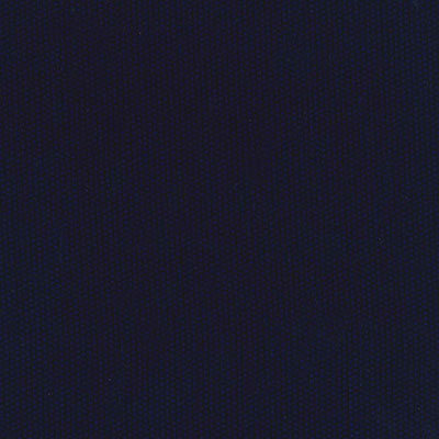 Fabric Swatch:  SCENE NAVY