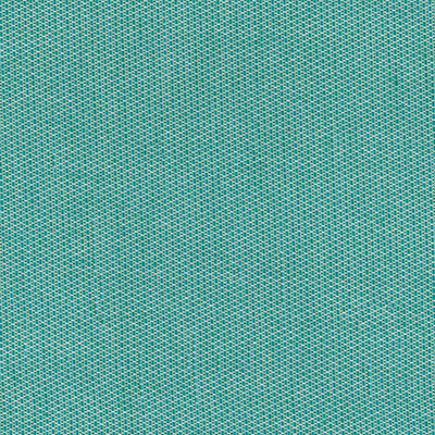 Fabric Swatch:  SCENE BERMUDA